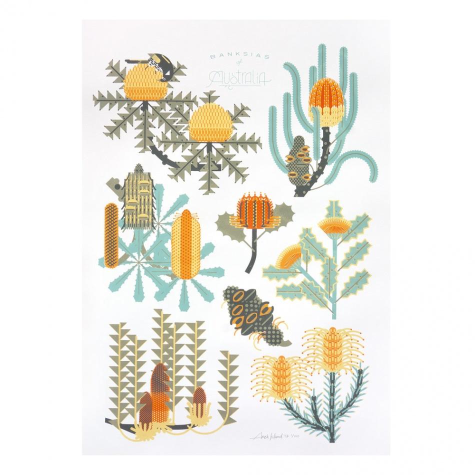 poster plantas @Amok Island