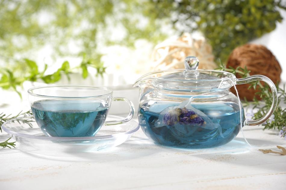 Ocean-Teabag-delfin-agua